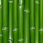 green_bamboo_textures_macro_19_1280x1024_wallpaperhi.com